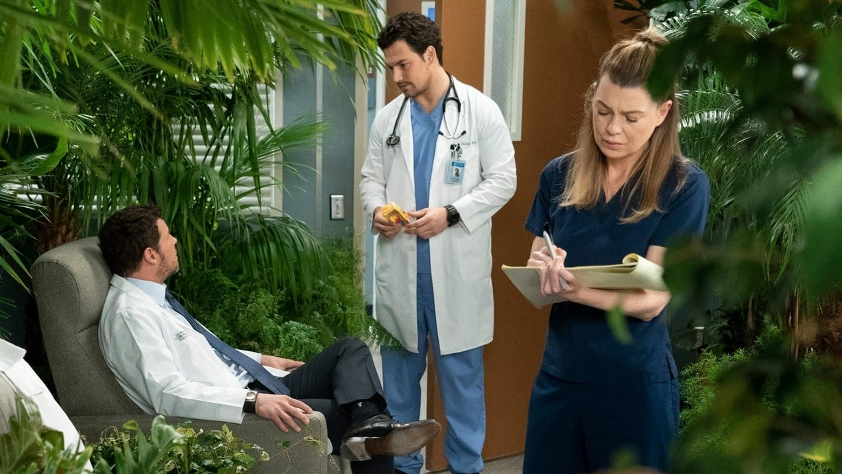 Grey's Anatomy Season 15 :Episode 18  Add it Up