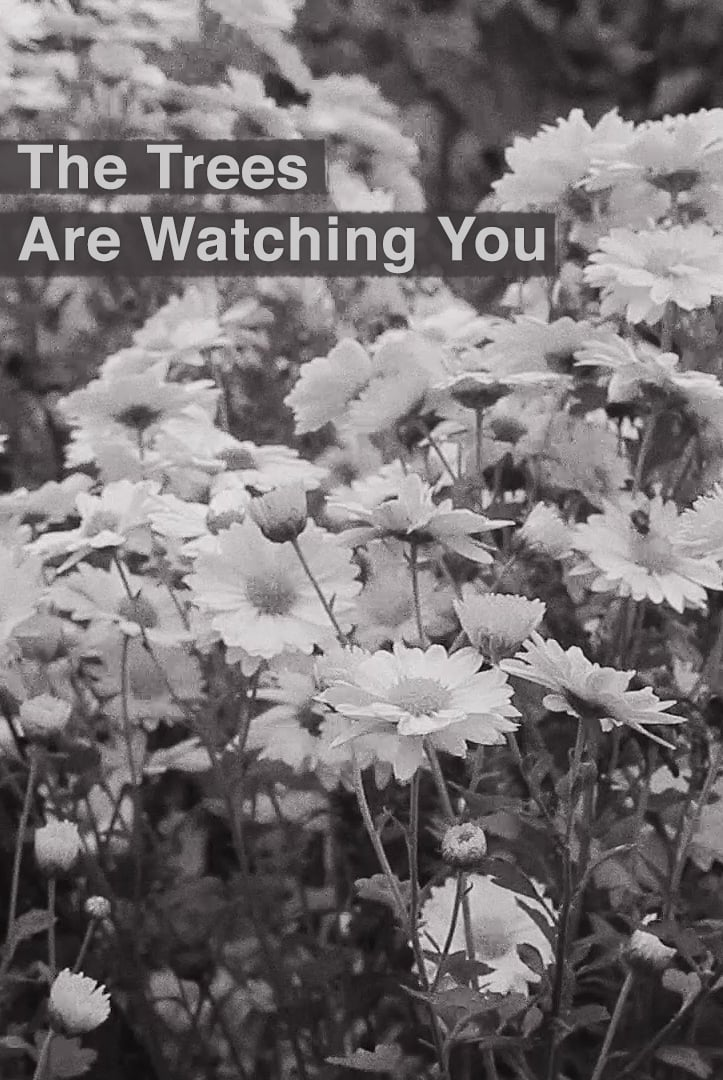 Ver The Trees Are Watching You Online HD Español ()
