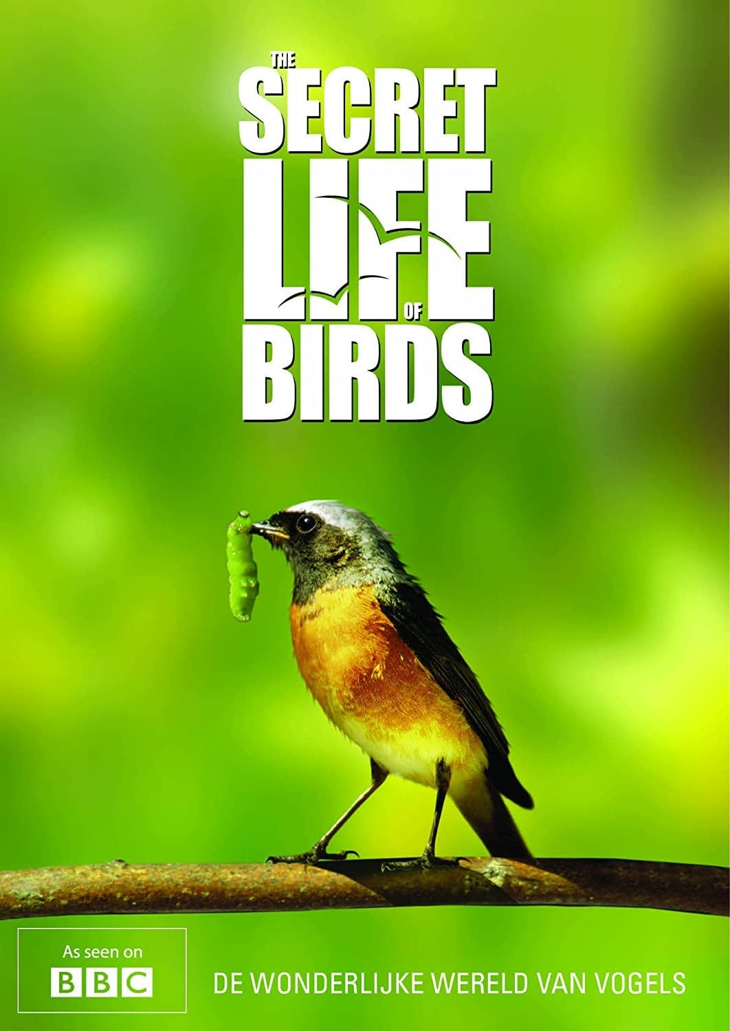 Iolo's Secret Life of Birds (2010)