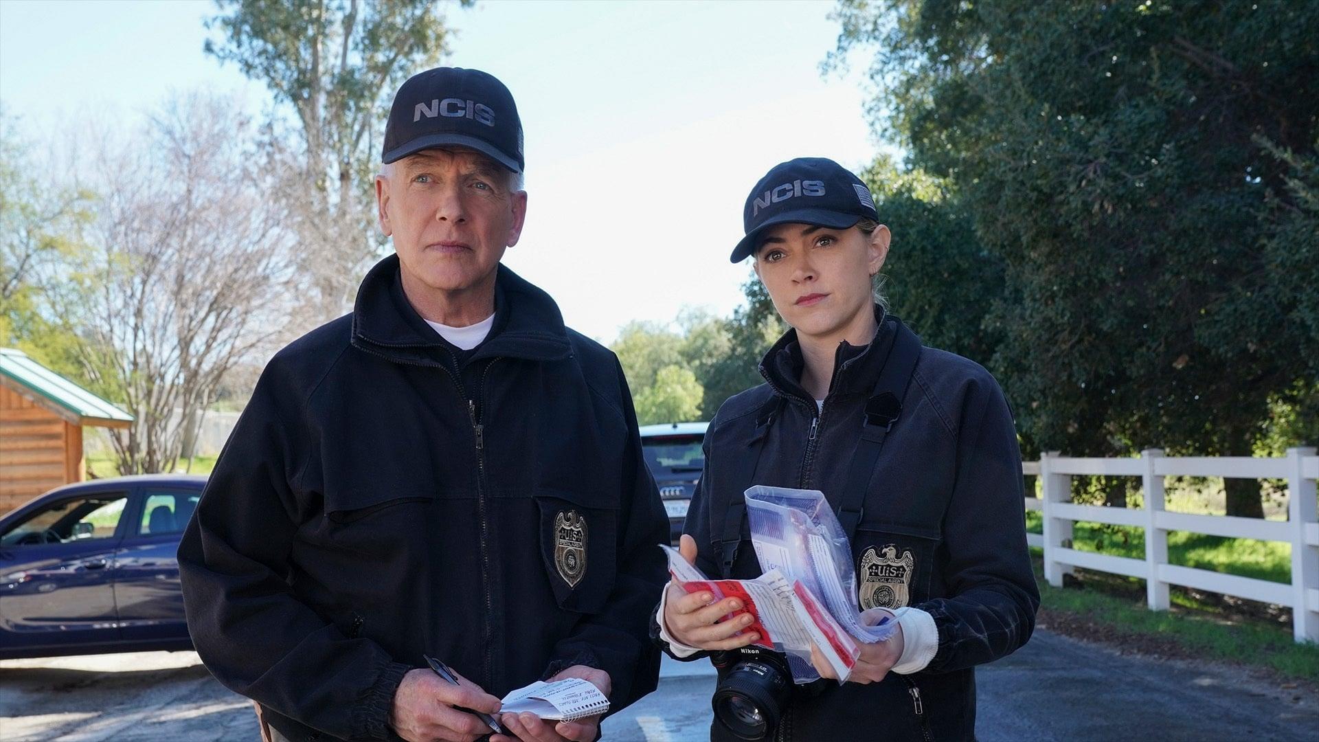 NCIS Season 17 :Episode 17  In a Nutshell