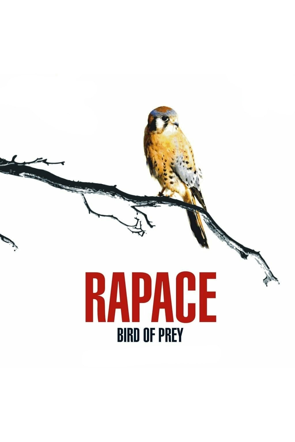 Bird of Prey (2006)