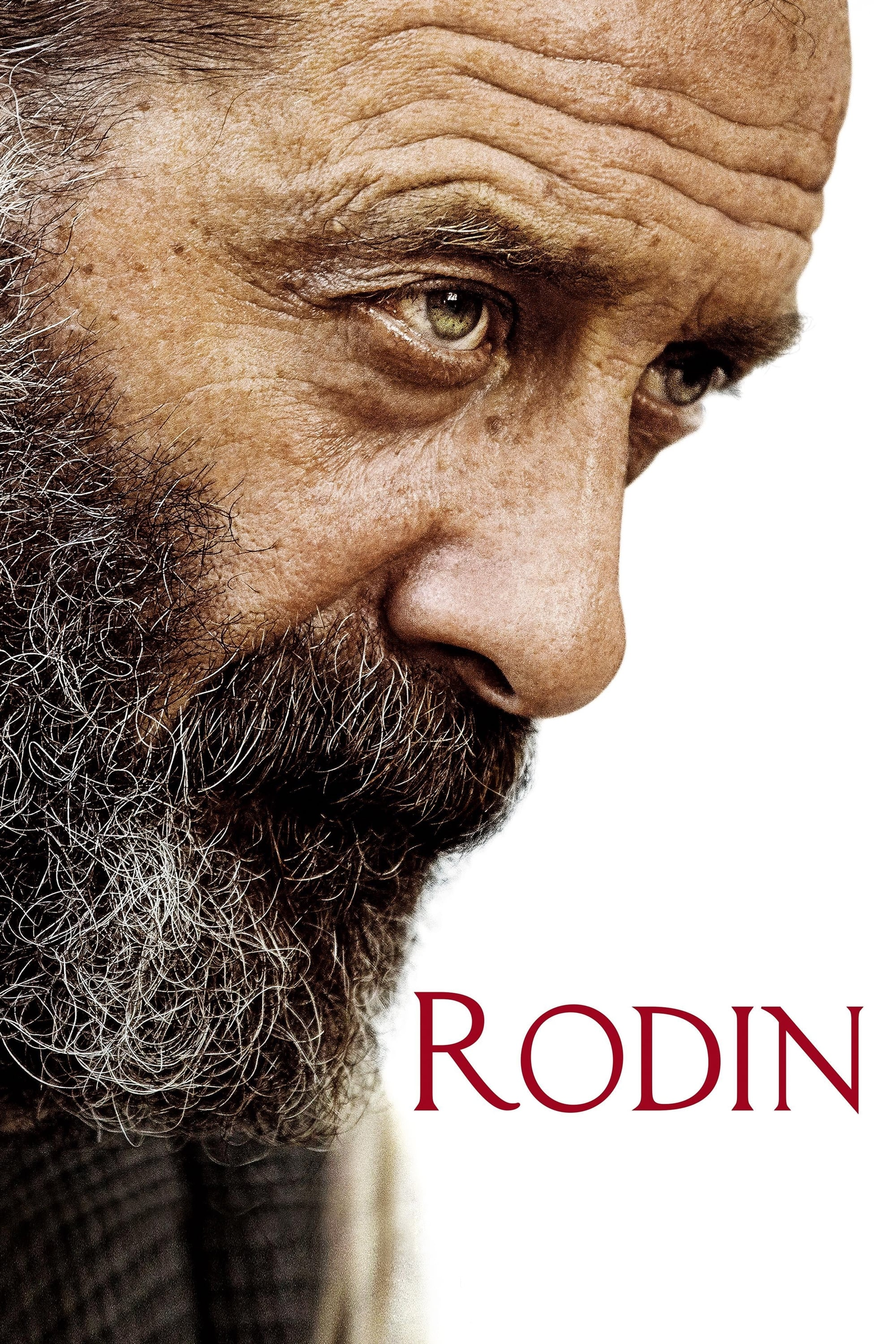 voir film Rodin streaming