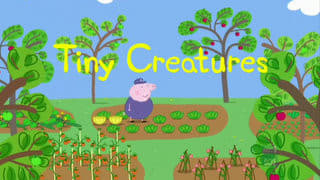 Peppa Pig Season 2 :Episode 29  Tiny Creatures