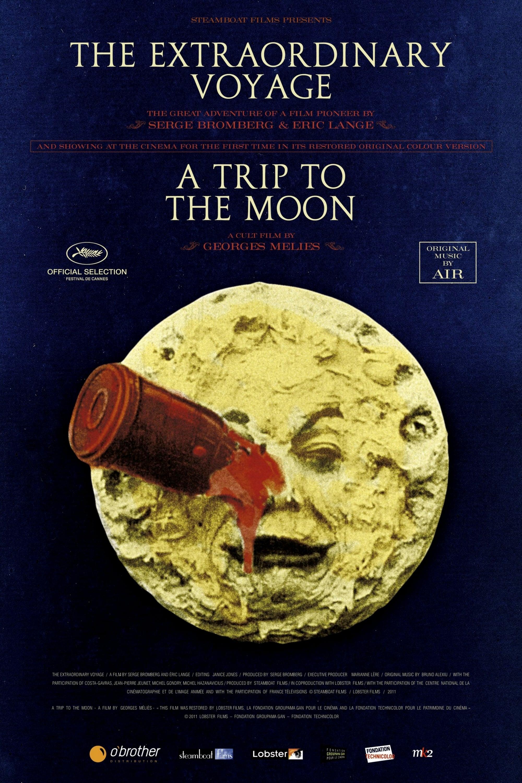 The Extraordinary Voyage (2011)