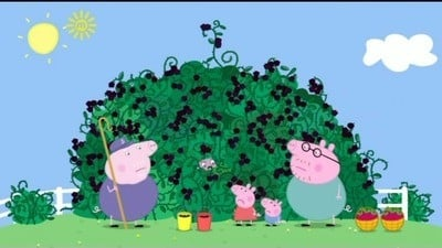 Peppa Pig Season 3 :Episode 46  The Blackberry Bush