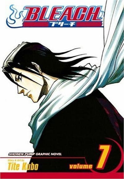 Bleach (Season 07)