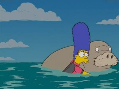 The Simpsons Season 17 :Episode 1  Bonfire of the Manatees