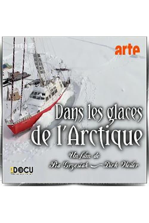 Ver Dans les Glaces de l?Arctique Online HD Español ()