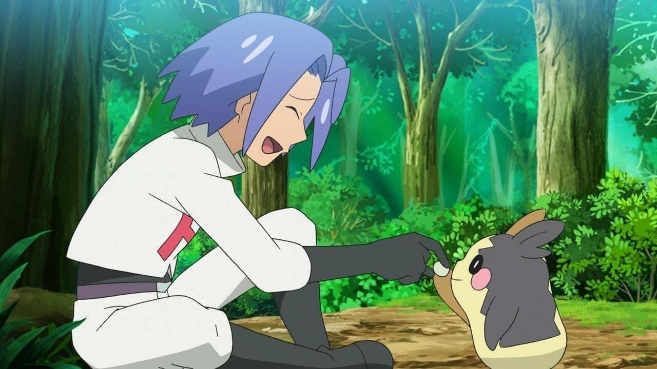 Pokémon Season 24 :Episode 22  Please! Get Morpeko!!