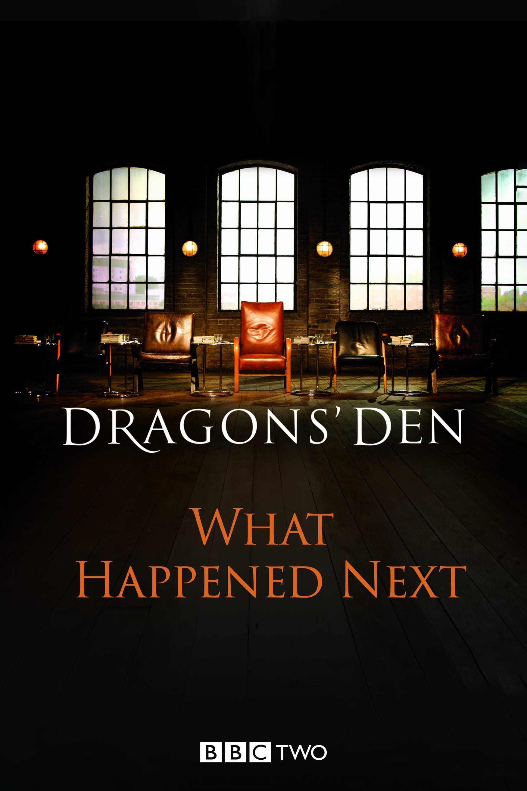 Dragons' Den: What Happened Next (2010)