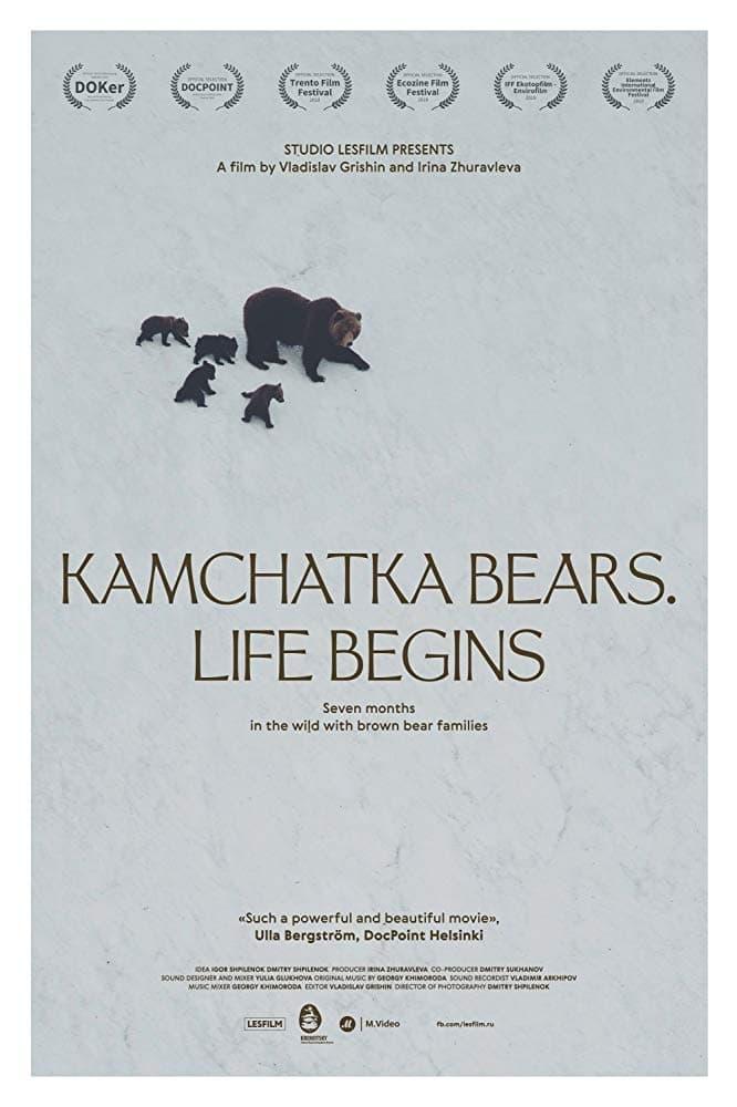 watch Kamchatka Bears. Life Begins 2018 online free