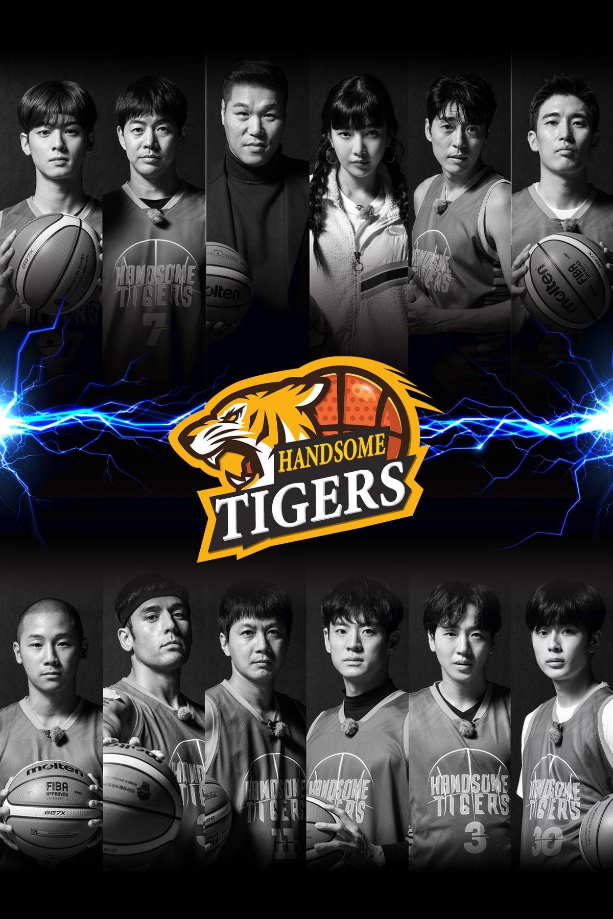 Handsome Tigers (2020)