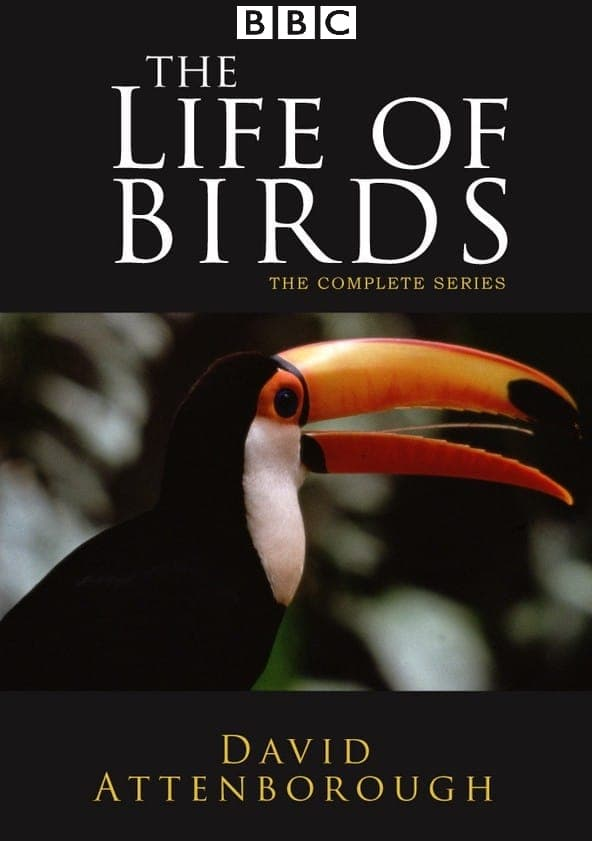 The Life of Birds (1998)