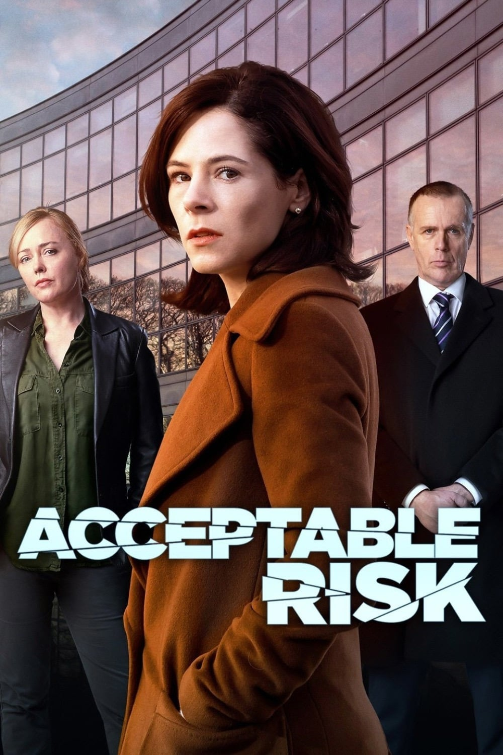 Acceptable Risk TV Shows About Murder Investigation