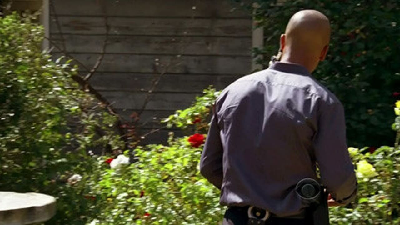 Criminal Minds - Season 4 Episode 24 : Amplification