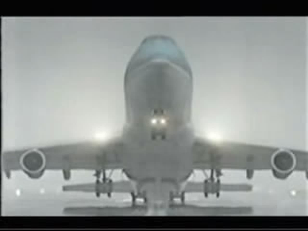 Birgenair flight 301 mixed signals when dating