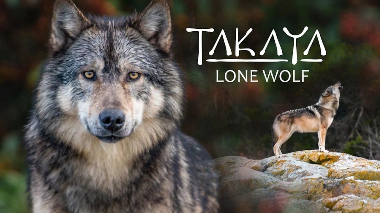 Takaya, Lone Wolf