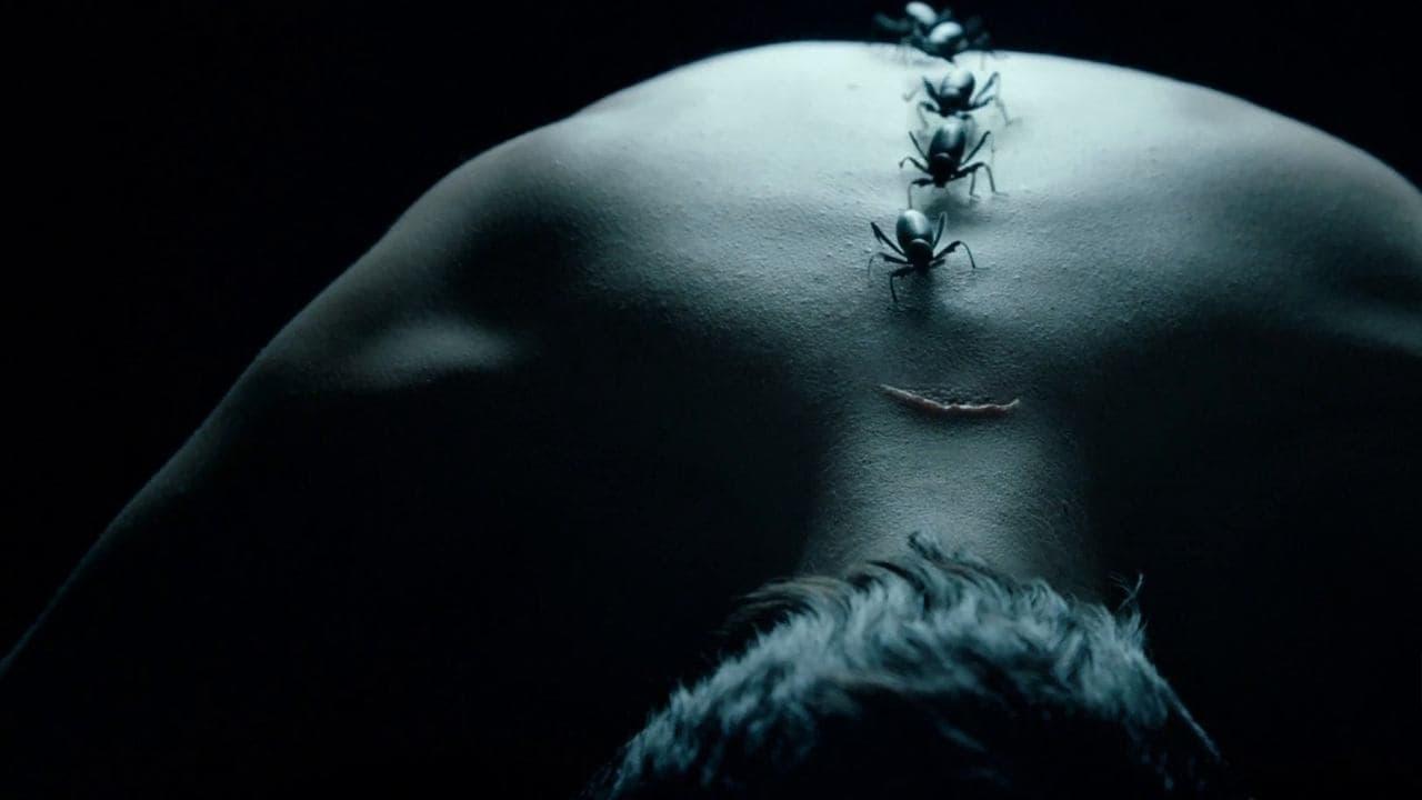 American Horror Story - Season 4 Episode 8 : Blood Bath