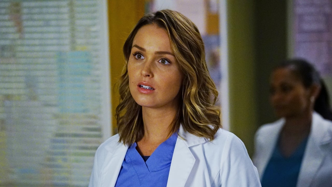 Grey's Anatomy - Season 13 Episode 4 : Falling Slowly