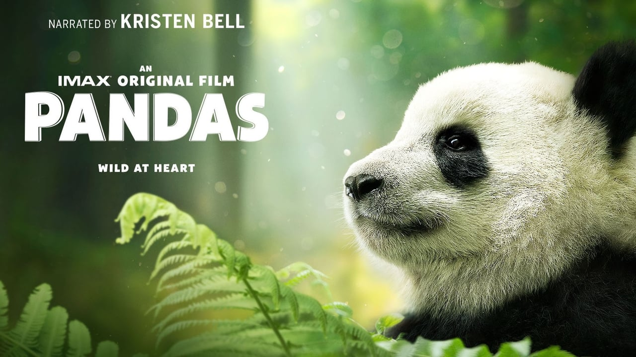 watch pandas movie amp tv stream
