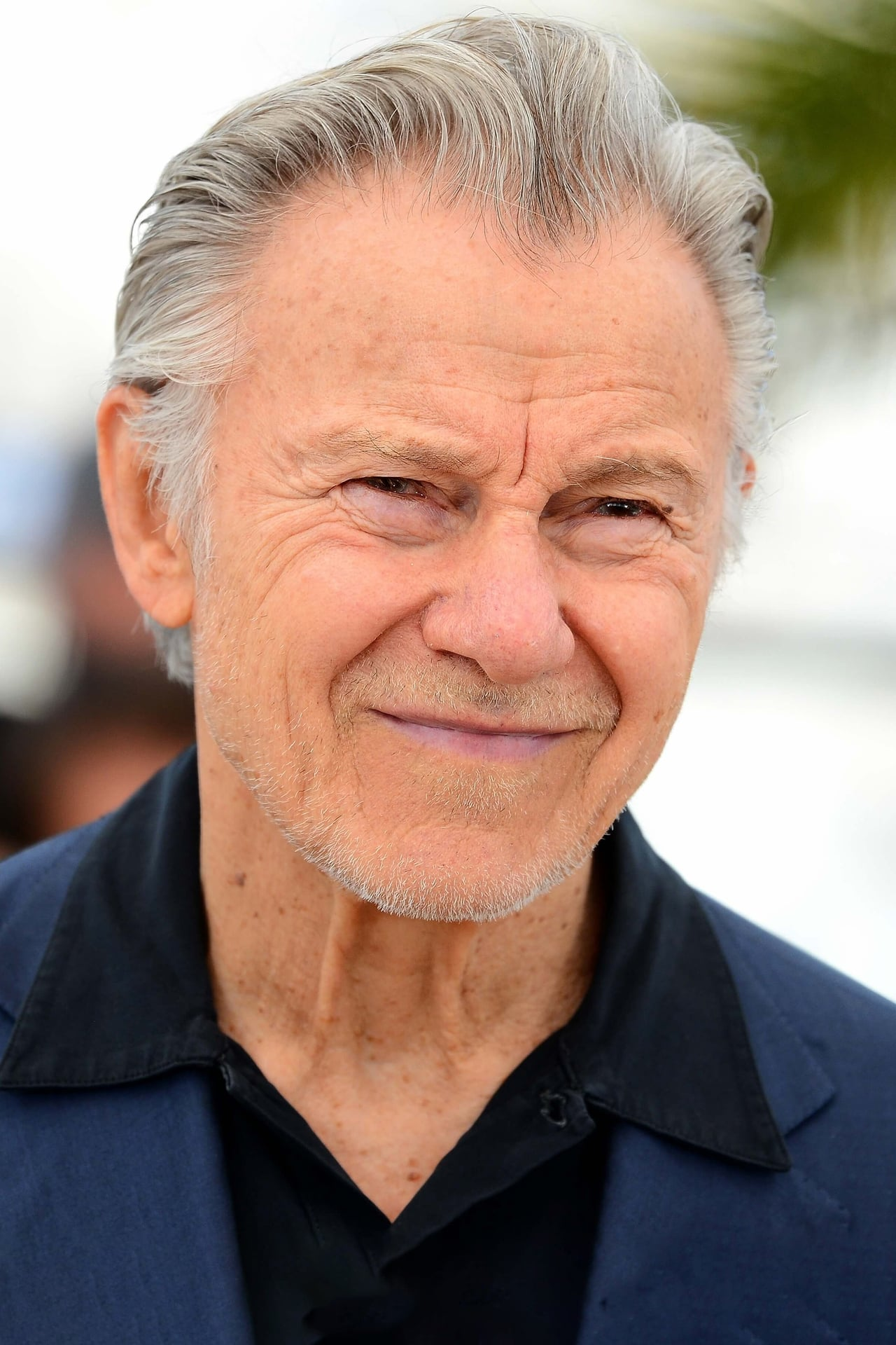 Harvey Keitel isAl