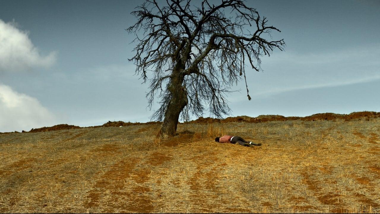 The Wild Pear Tree (2018) Film Online Subtitrat