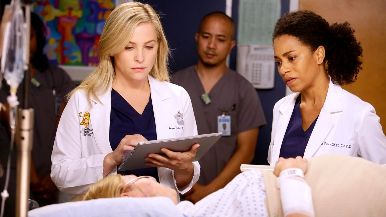 Grey's Anatomy - Season 13 Episode 11 : Jukebox Hero