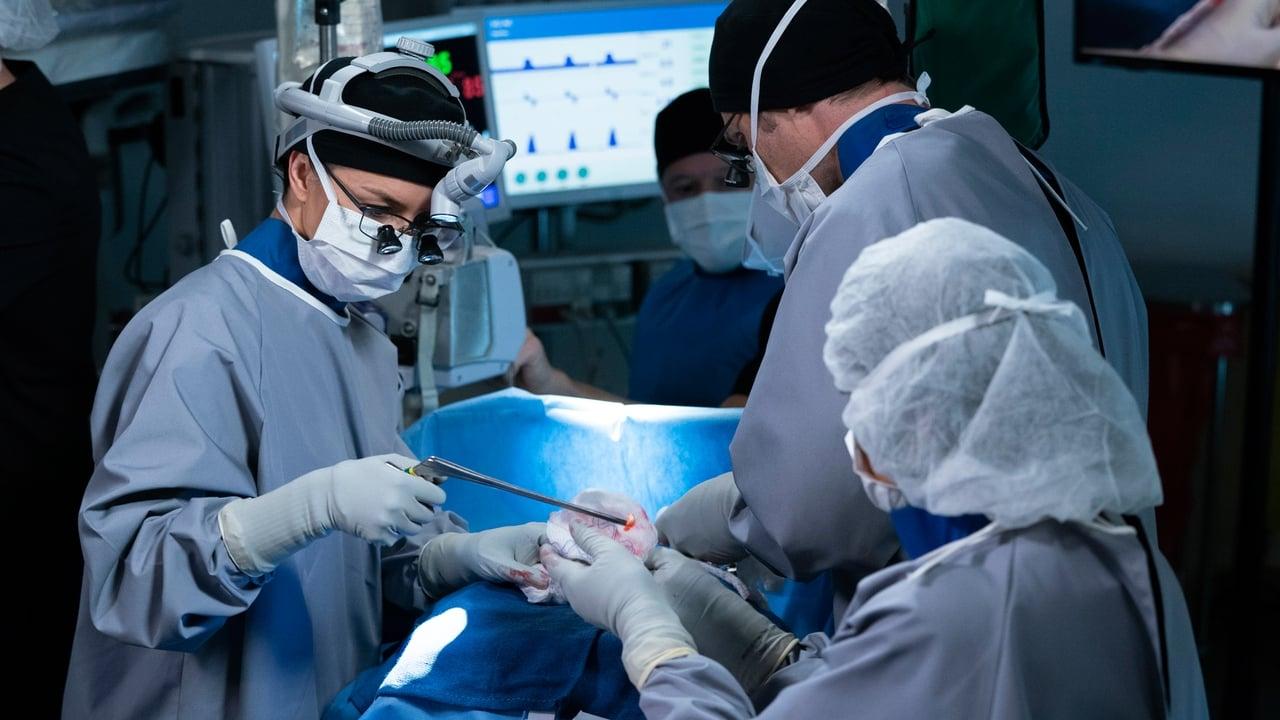 Grey's Anatomy - Season 15 Episode 21 : Good Shepherd