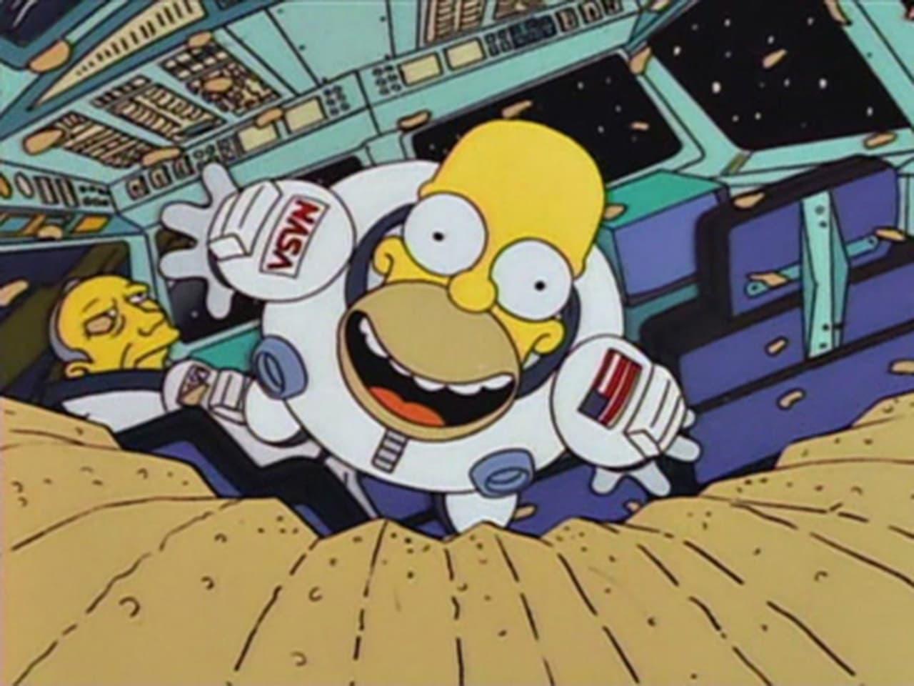 The Simpsons - Season 5 Episode 15 : Deep Space Homer
