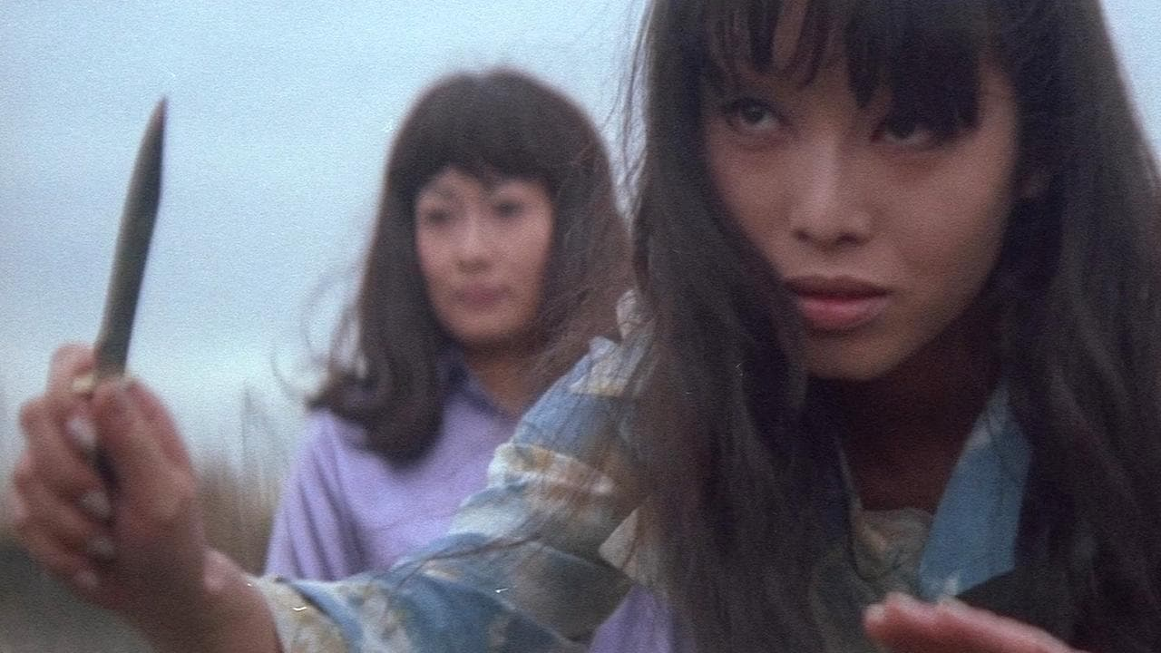 Stray Cat Rock: Delinquent Girl Boss (1970)
