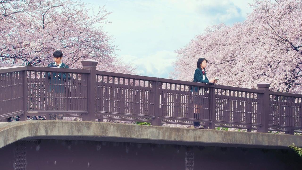 Nonton Film Kimi No Suizô Wo Tabetai Live Action (2017 ...