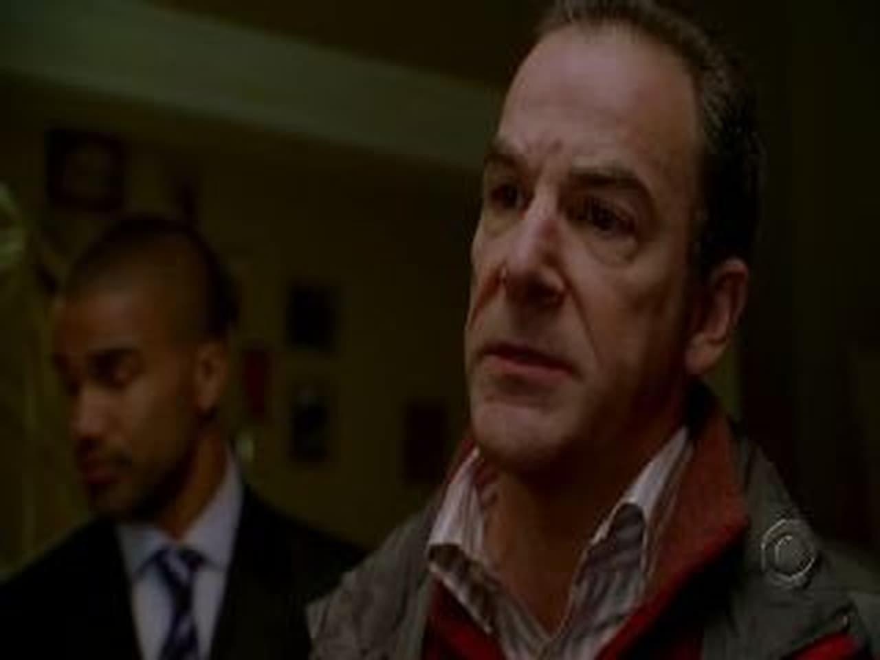 Criminal Minds - Season 1 Episode 1 : Extreme Aggressor (2020)