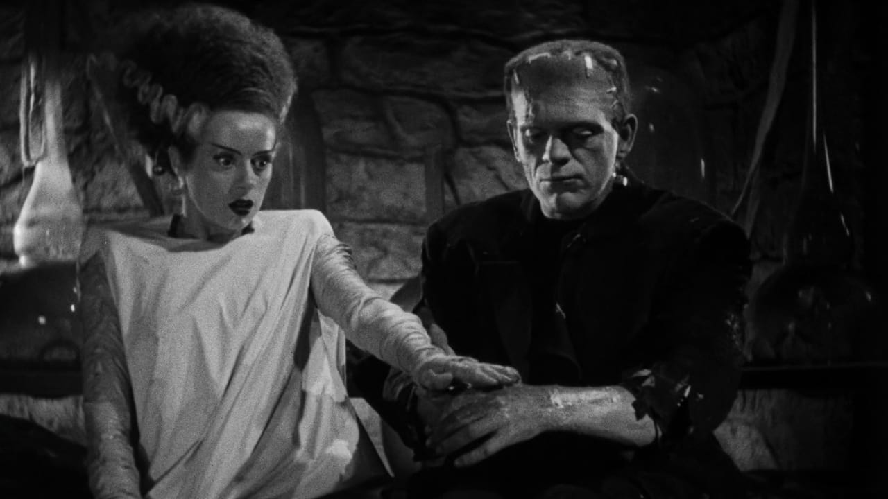 frankenstein a duel till the end He wanders the streets of ingolstadt until henry clerval finds him in poor condition henry had come to see about his friend and to enroll at the university henry and victor return to victor's apartment to find the monster gone.