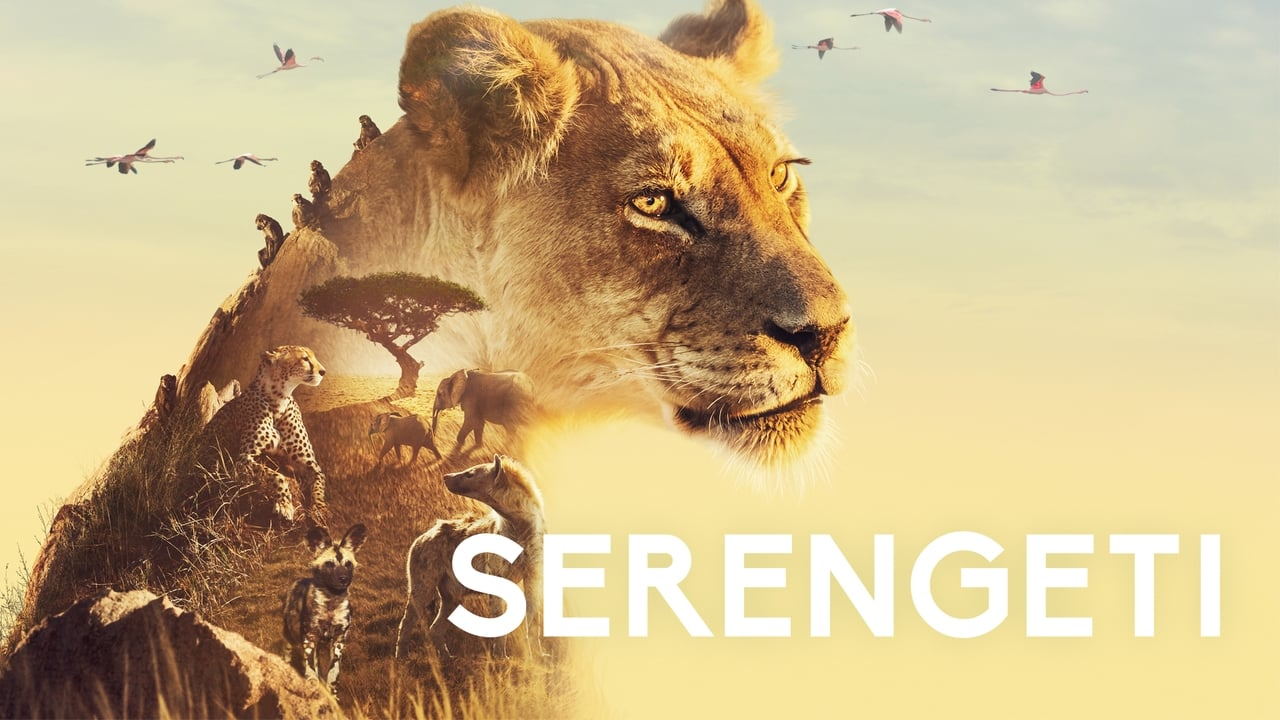 cover-Serengueti