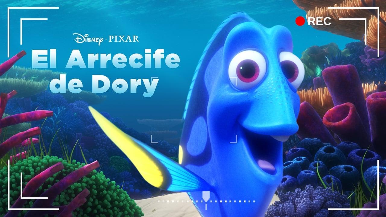 Dory's Reef Cam 2