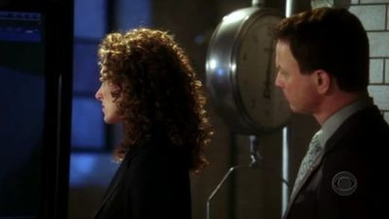 an analysis of the tv series csi ny season 3 episode 24 snow day Watch series online,watch tv shows online  the good fight season 2 episode 11 (day 478) lucifer season 3 episode 24 (a devil of my word).