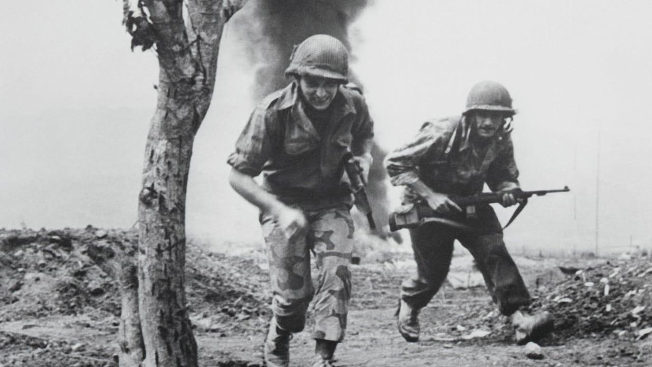 merwins most explicit anti vietnam war poem Poetry guides & how tos vietnam decal (145 results) sort by: vietnam war combat veteran die cut vinyl decal sticker.