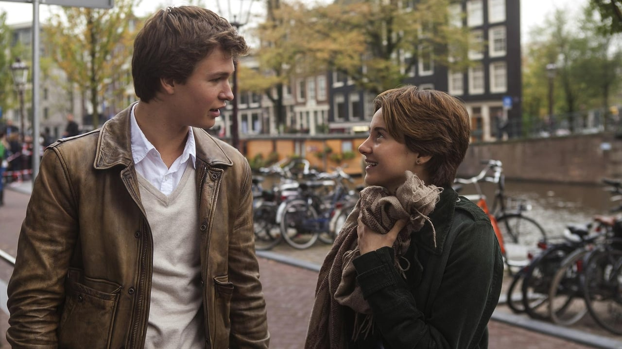 The Fault in Our Stars 2