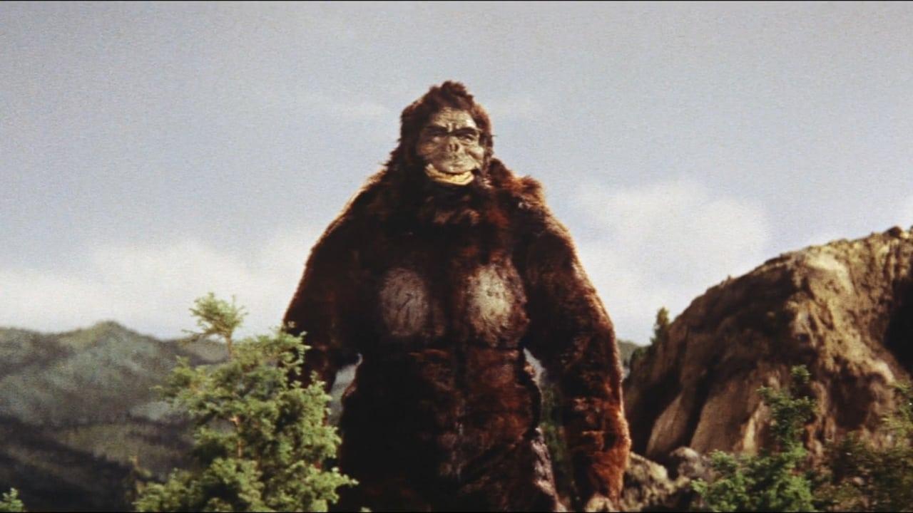 King Kong vs. Godzilla 1