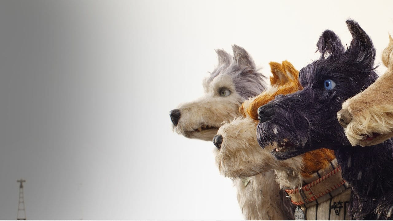Isle of Dogs 5