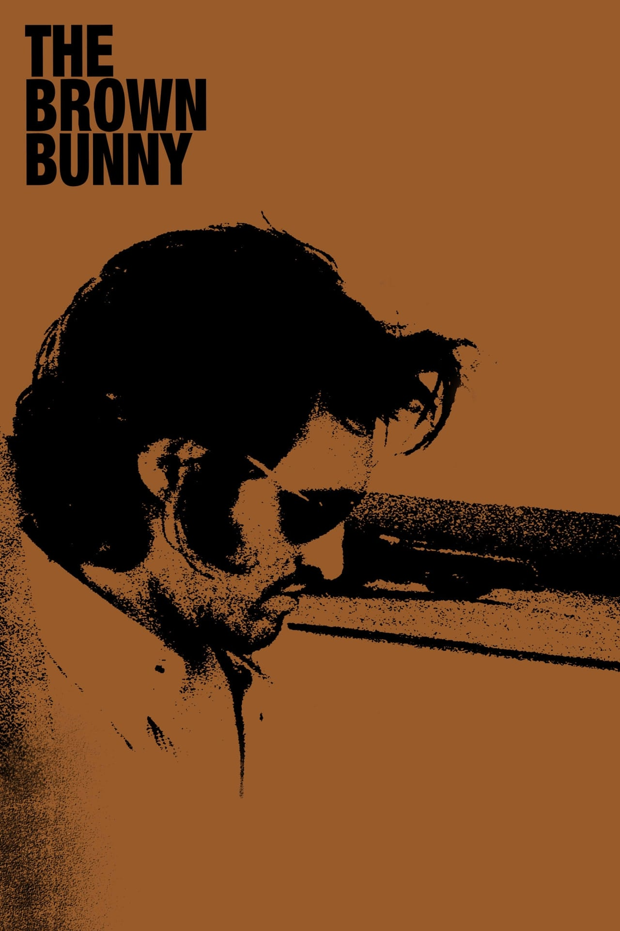 The brown bunny video