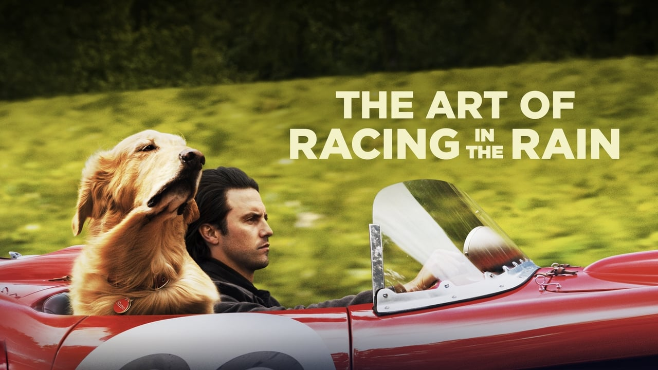 The Art of Racing in the Rain 3