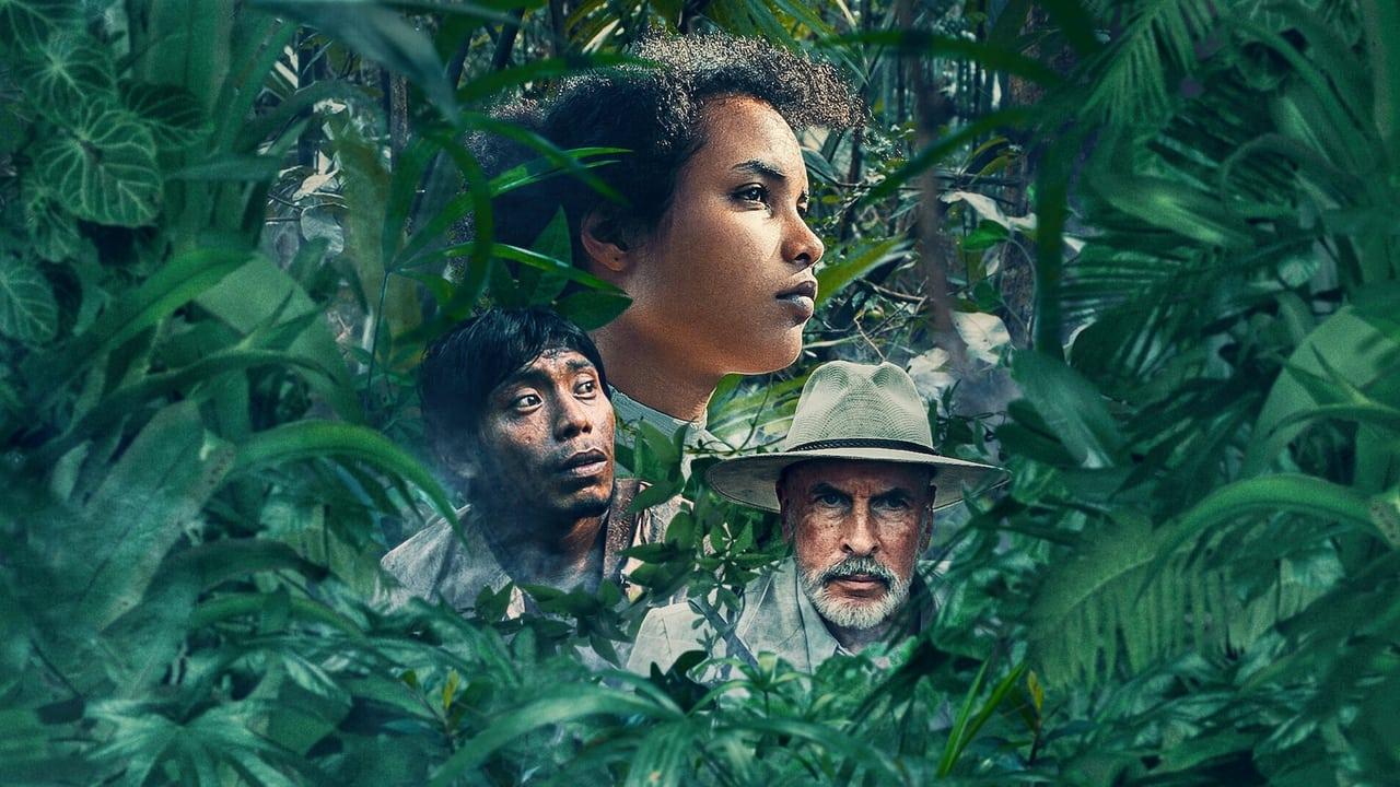 Tragic Jungle(2021)