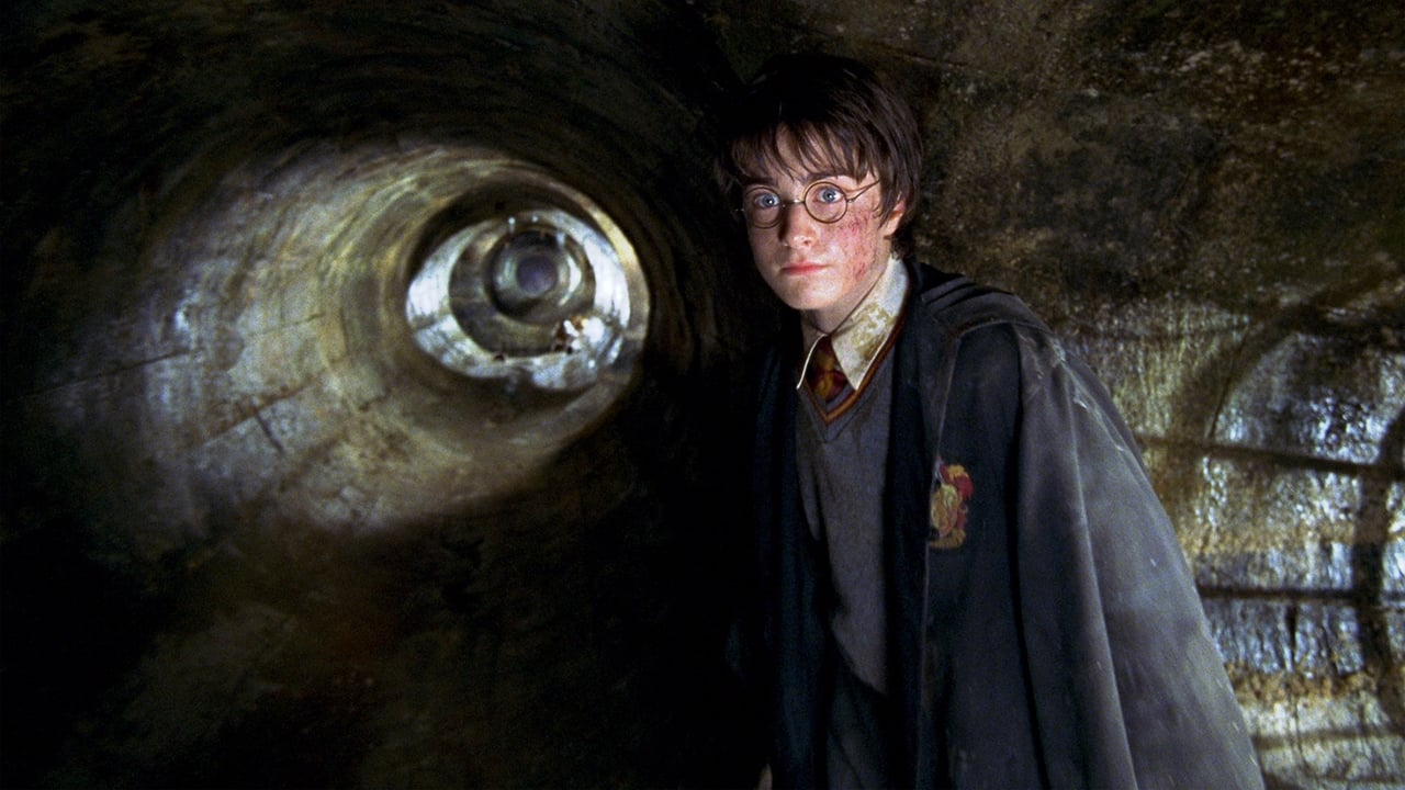 Harry Potter and the Chamber of Secrets 5