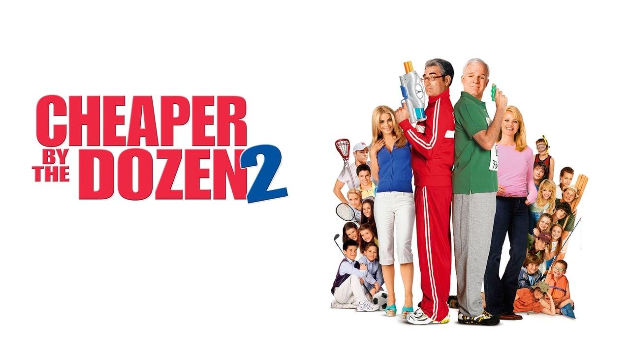 Cheaper by the Dozen 2 2