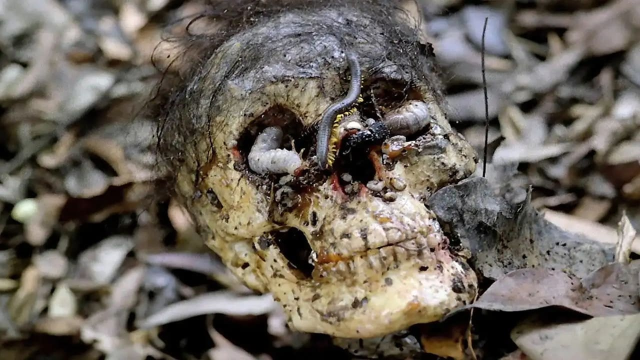 Cannibal Holocaust 2
