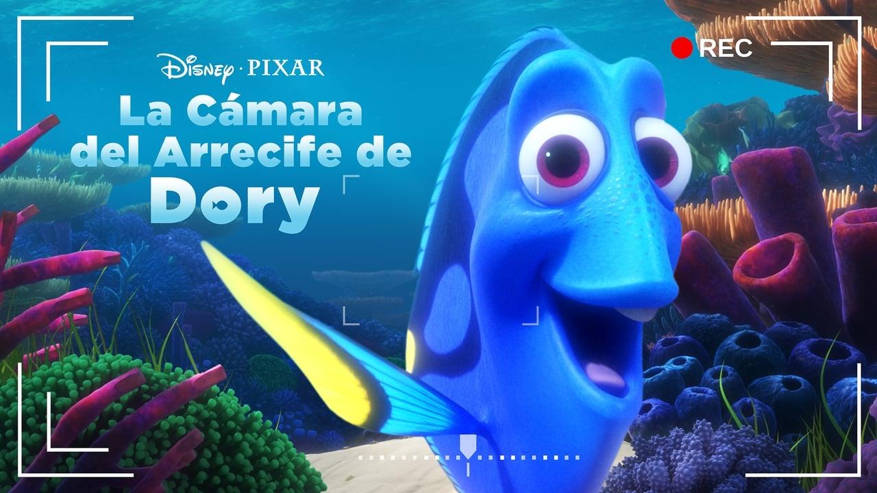 Dory's Reef Cam 5