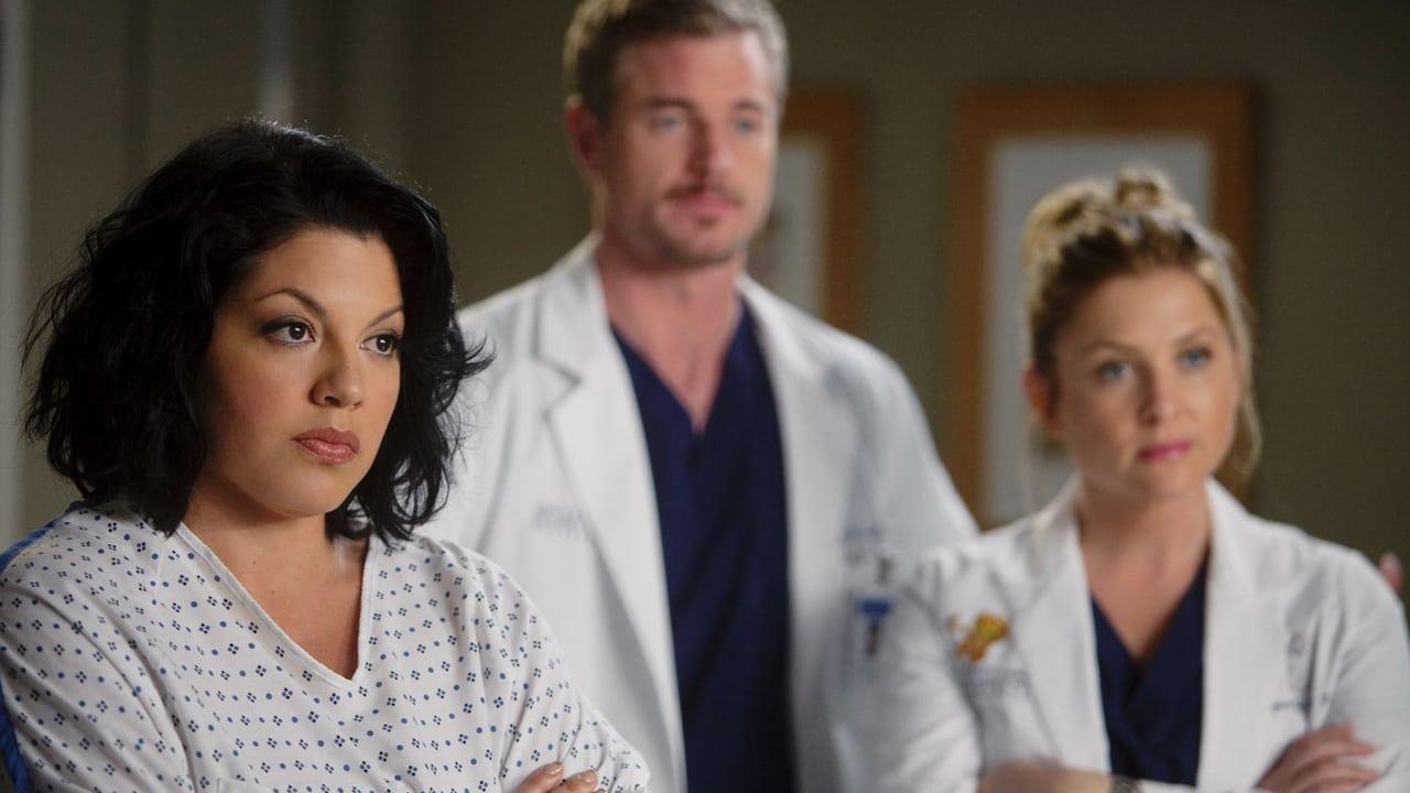 Grey's Anatomy - Season 7 Episode 13 : Don't Deceive Me (Please Don't Go)