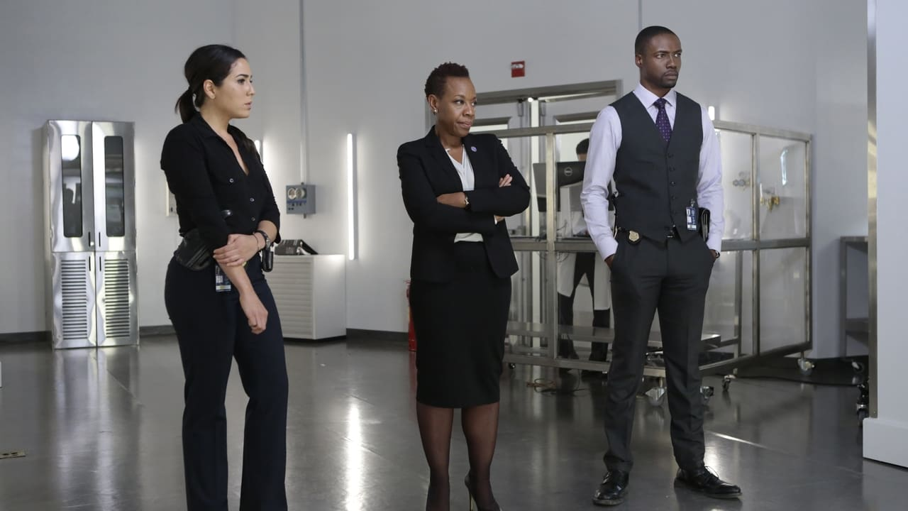Blindspot - Season 1 Episode 9 : Authentic Flirt (2020)