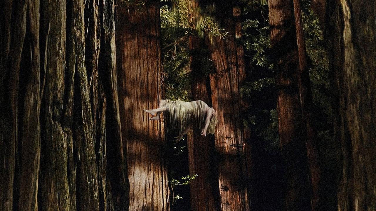 cover-Woodshock